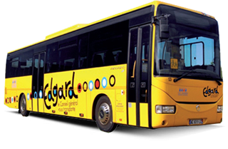 bus-edgard-transport